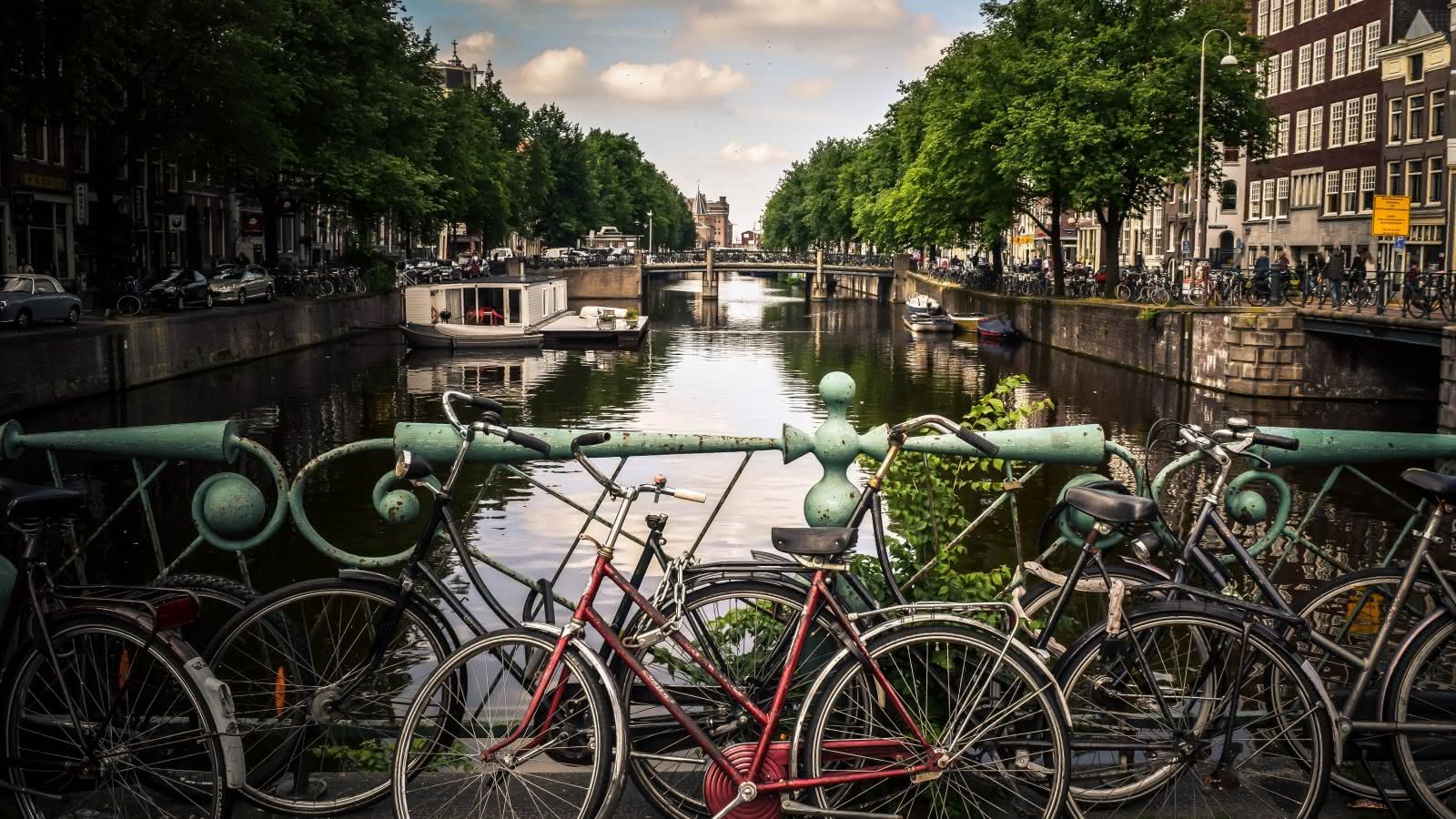 sandemans amsterdam bike tour