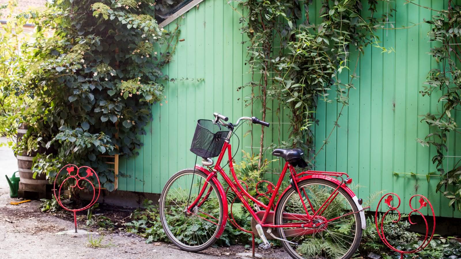 SANDEMANs Copenhagen Bike Tour