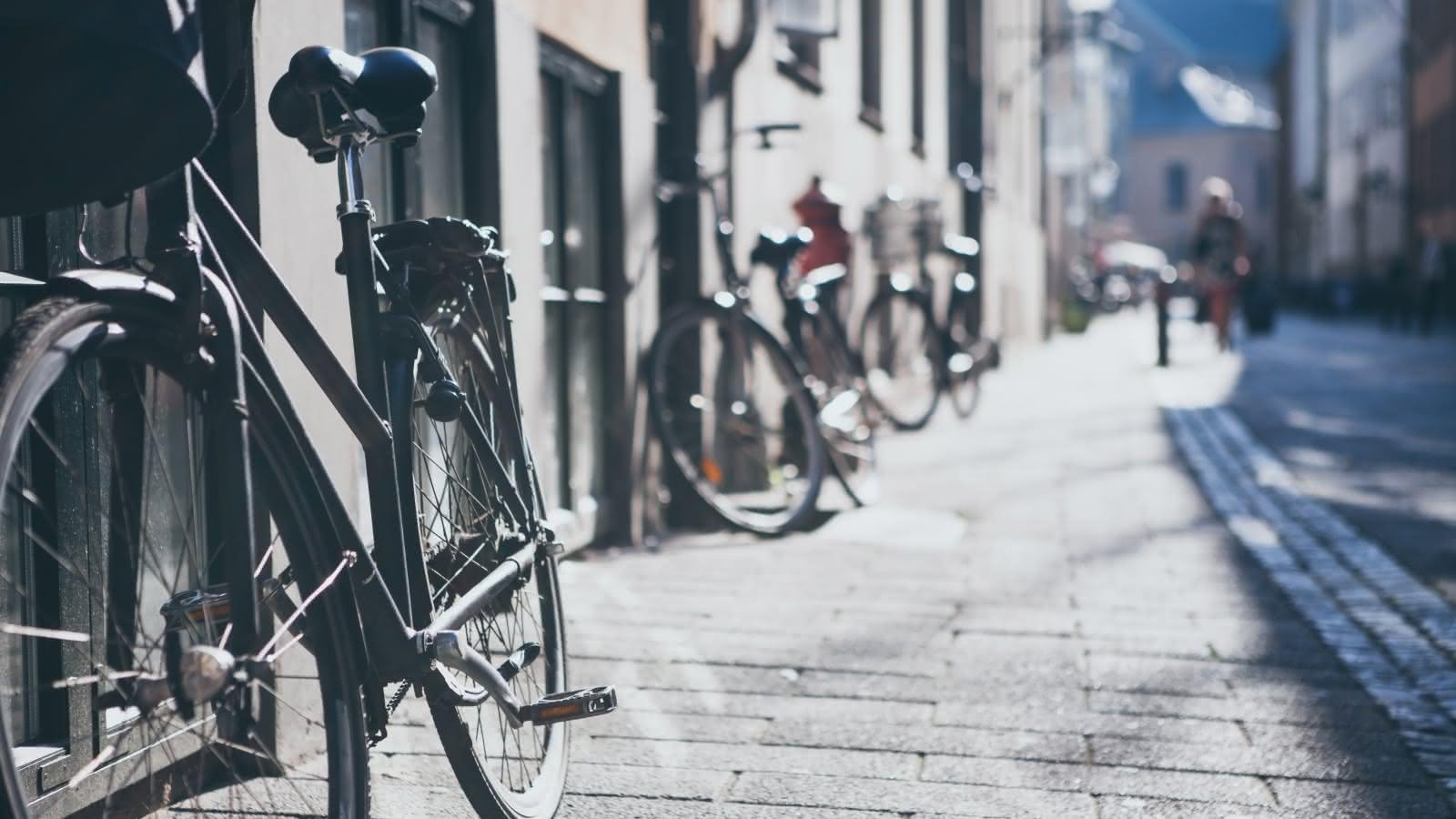 SANDEMANs Copenhagen Private Tours