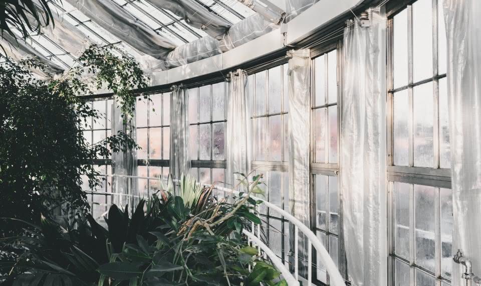 things to do in copenhagen Botanisk Have
