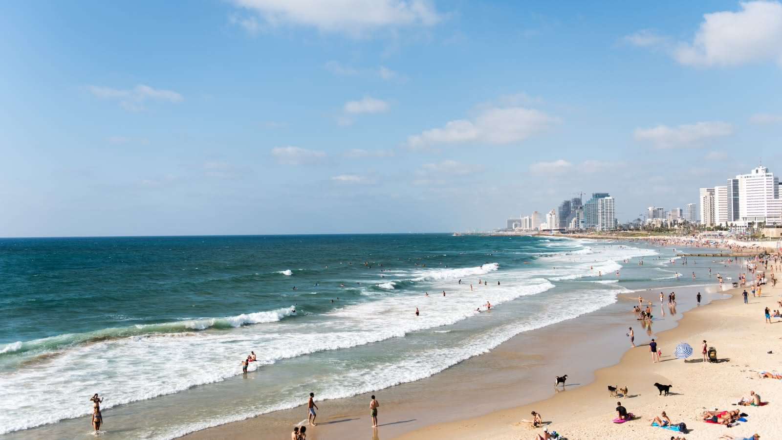 things to do in tel aviv sandemans travel guide