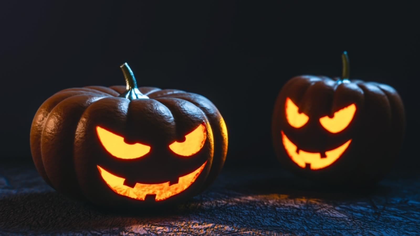 Halloween Sandemans 2