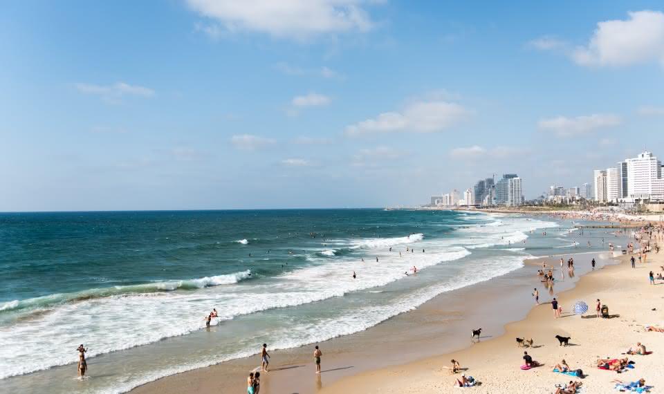things to do in tel aviv sandemans travel guide